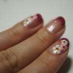 100均ネイルシールを使って簡単セルフネイル♪着物に合うグラデーション×桜ネイルの方法